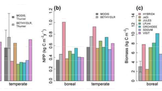 Evaluation of climate-related carbon turnover processes in global vegetation models for boreal and temperate forests
