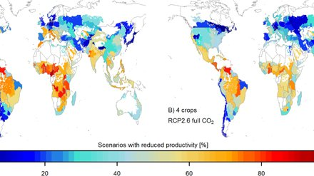 Implications of climate mitigation for future agricultural production