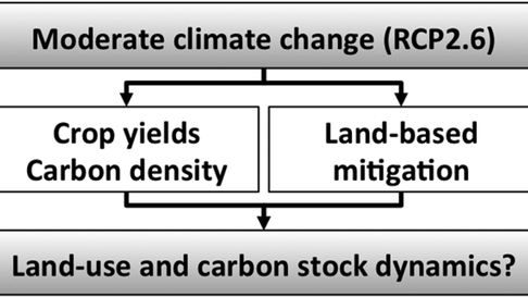 Land-Use and Carbon Cycle Responses to Moderate Climate Change: Implications for Land-Based Mitigation?